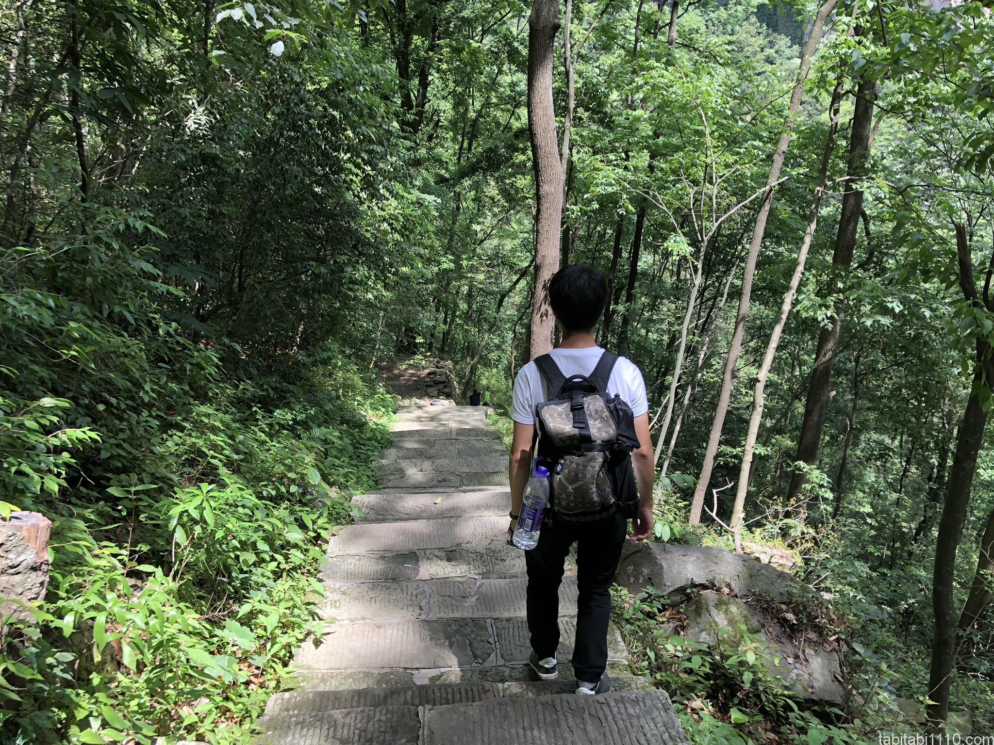 武陵源観光|下り