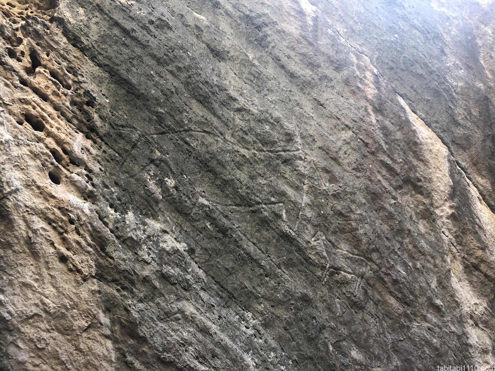 バクー観光|ゴブスタン岩絵