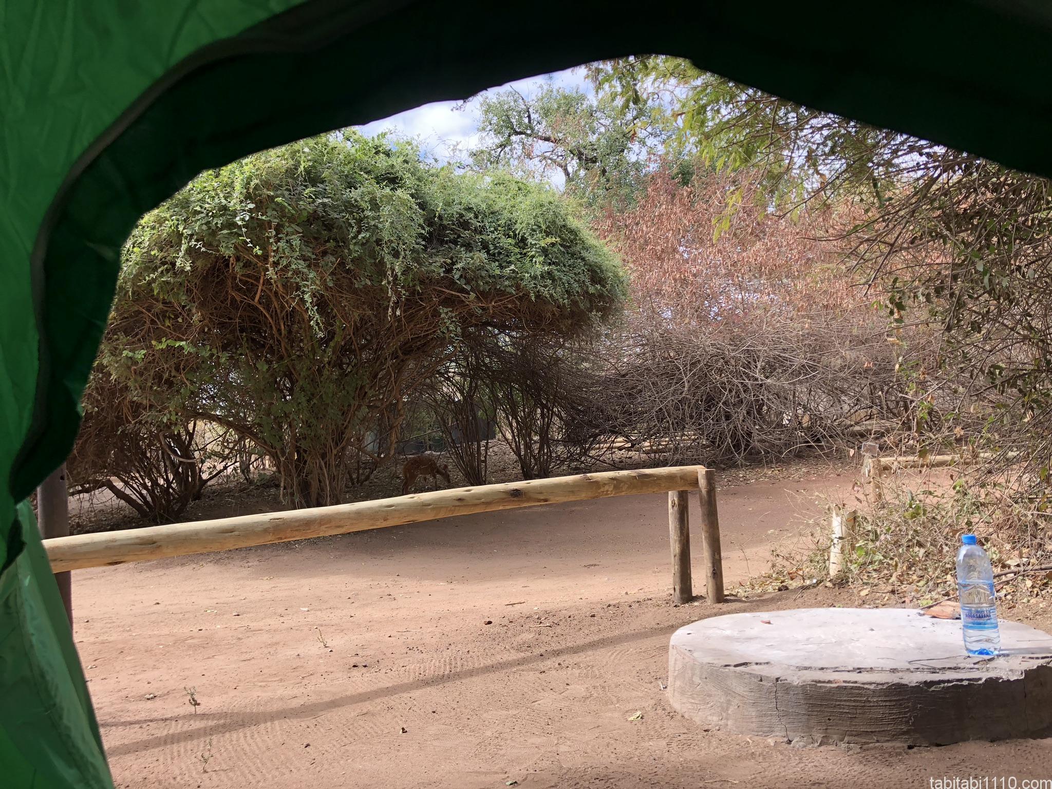 チョベサファリロッジのキャンプ場の様子③
