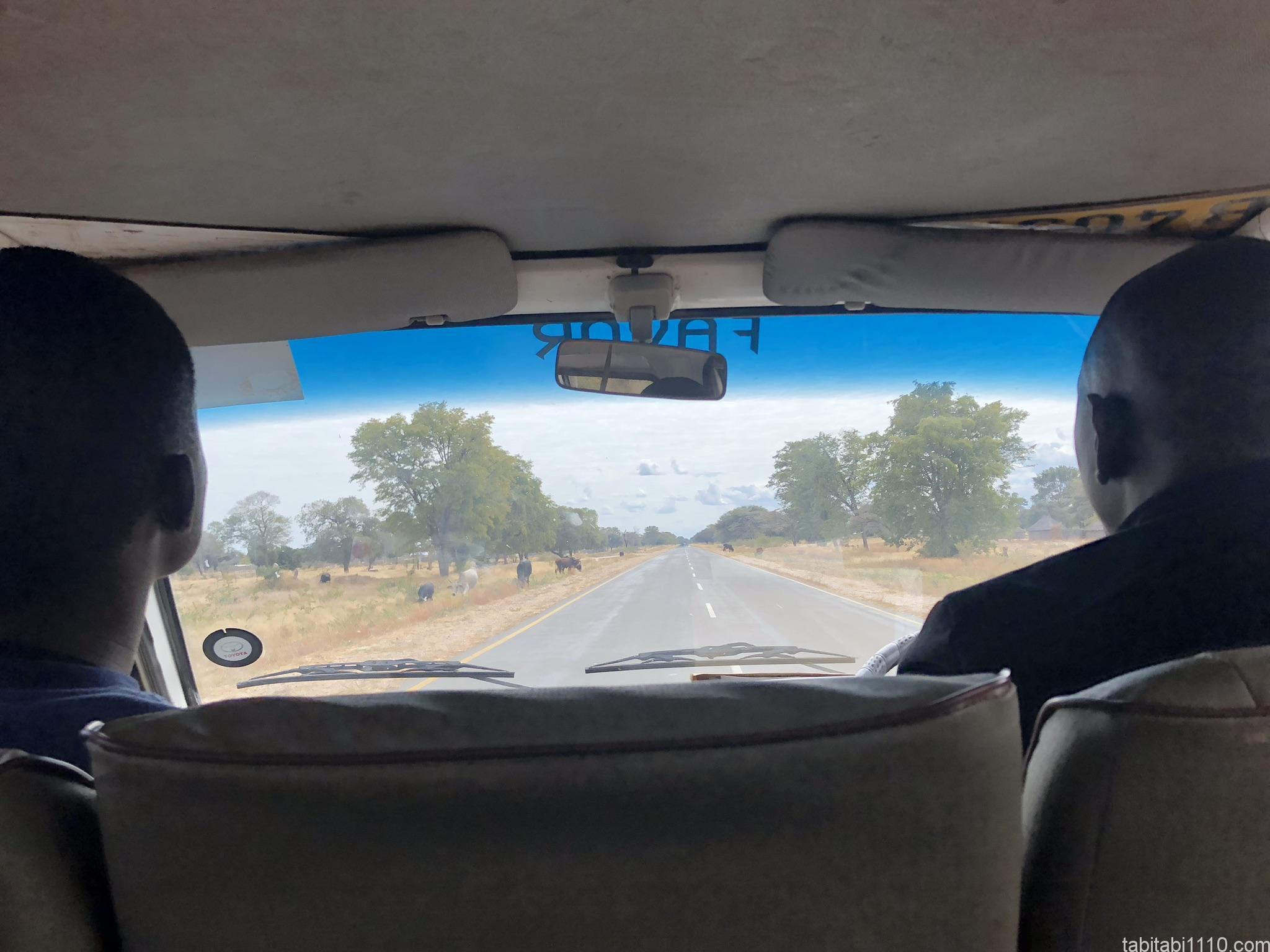ナミビア景色