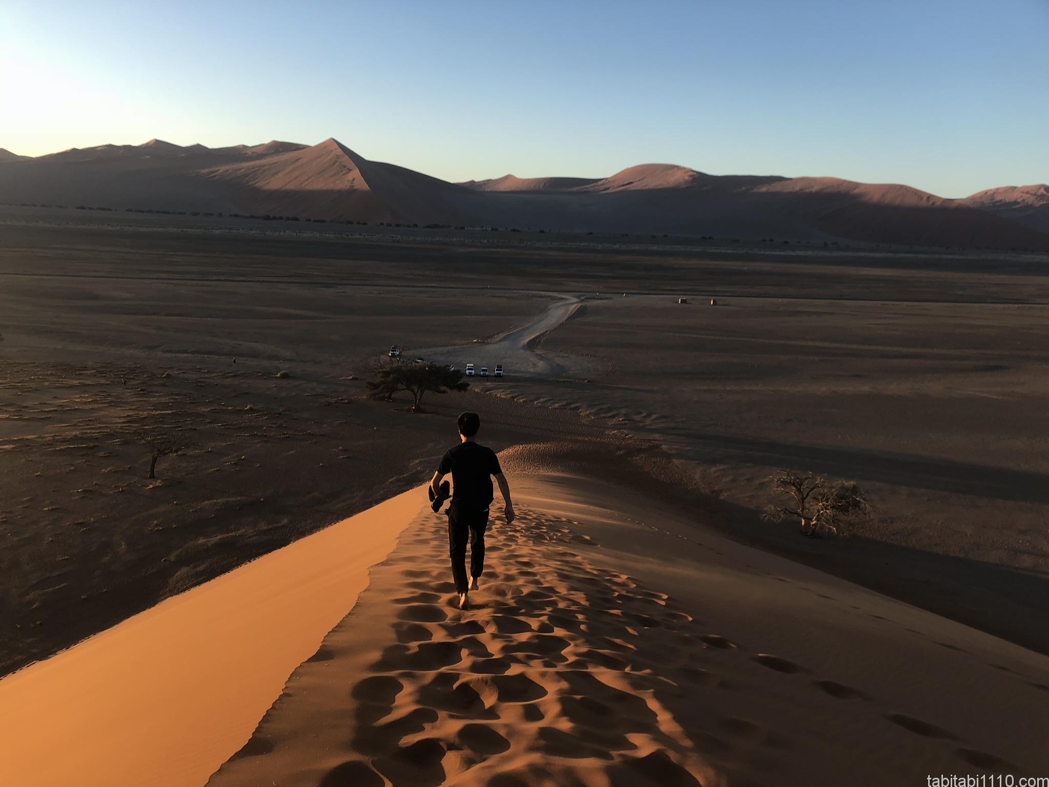 ナミブ砂漠|DUNE45