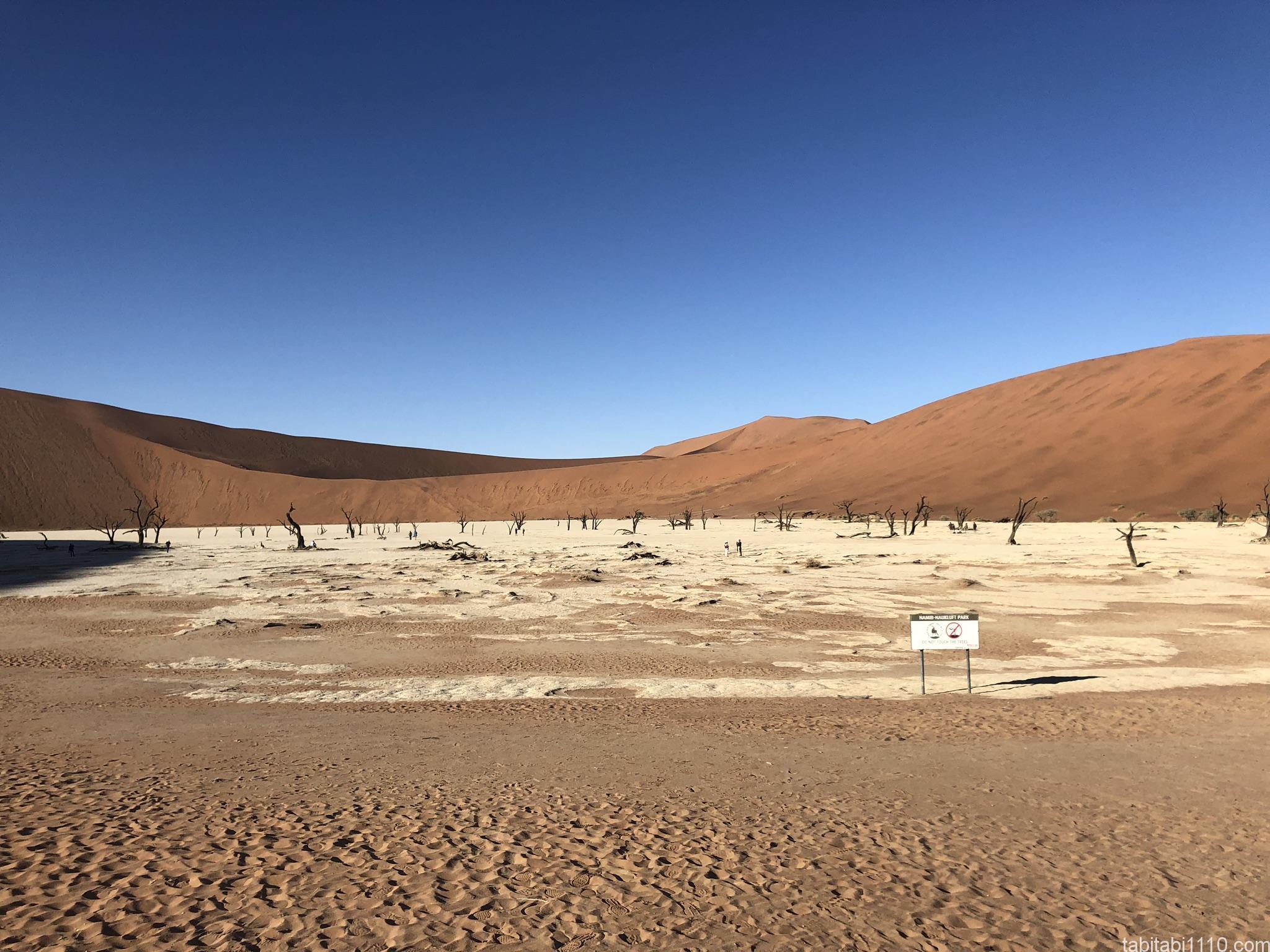 ナミブ砂漠|デッドフレイ