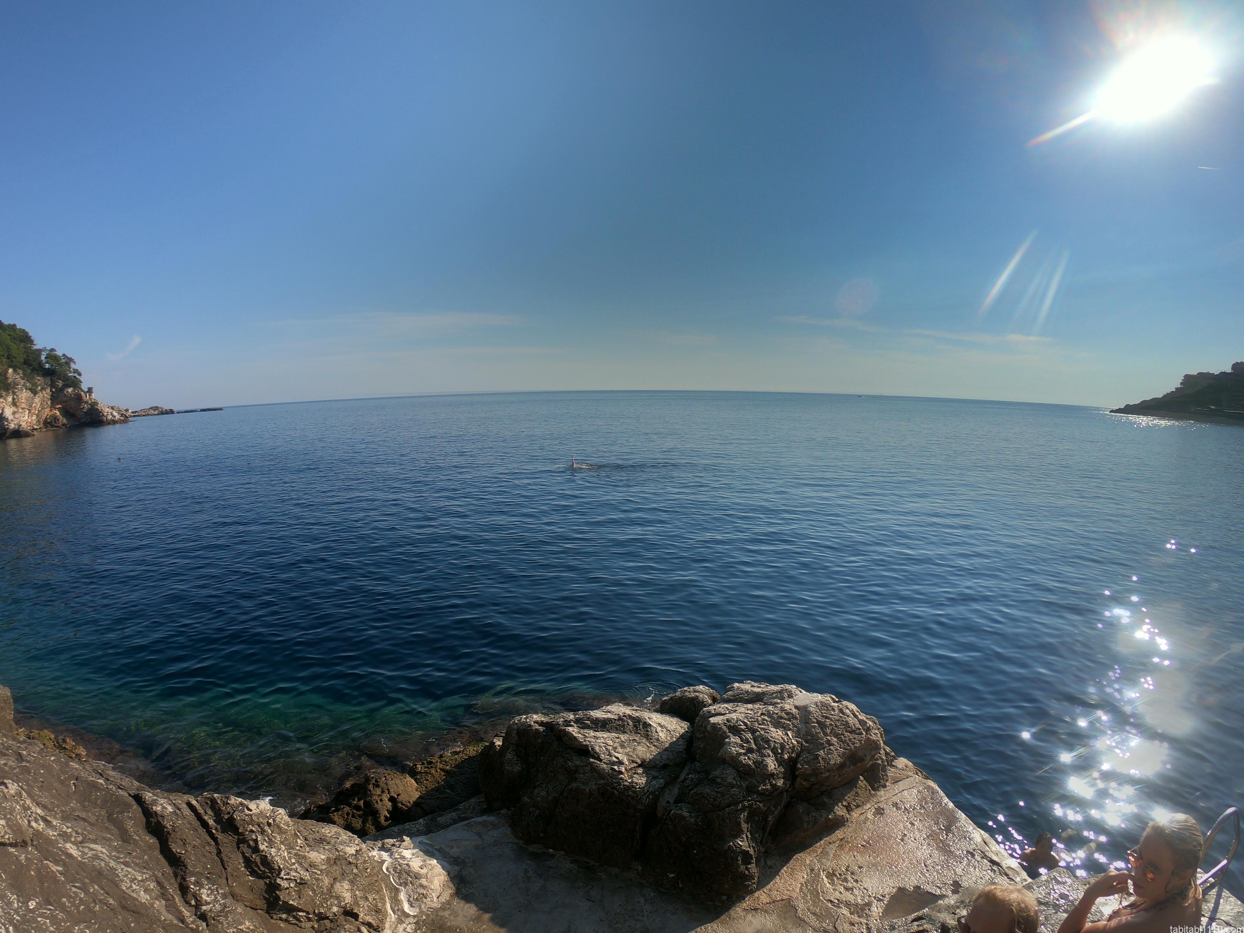 ドゥブロブニク|海
