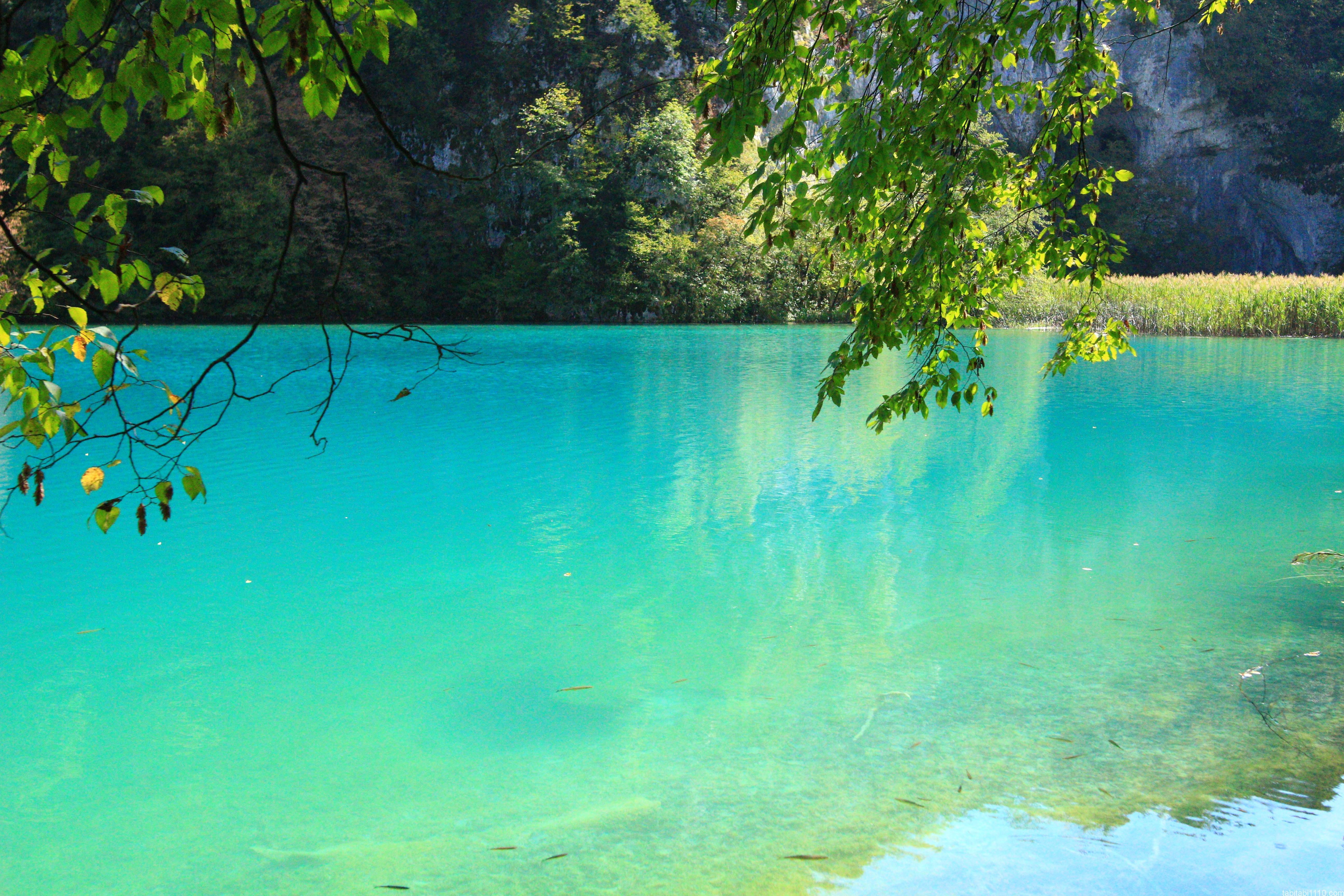 プリトヴィッチェ湖群国立公園|下湖14