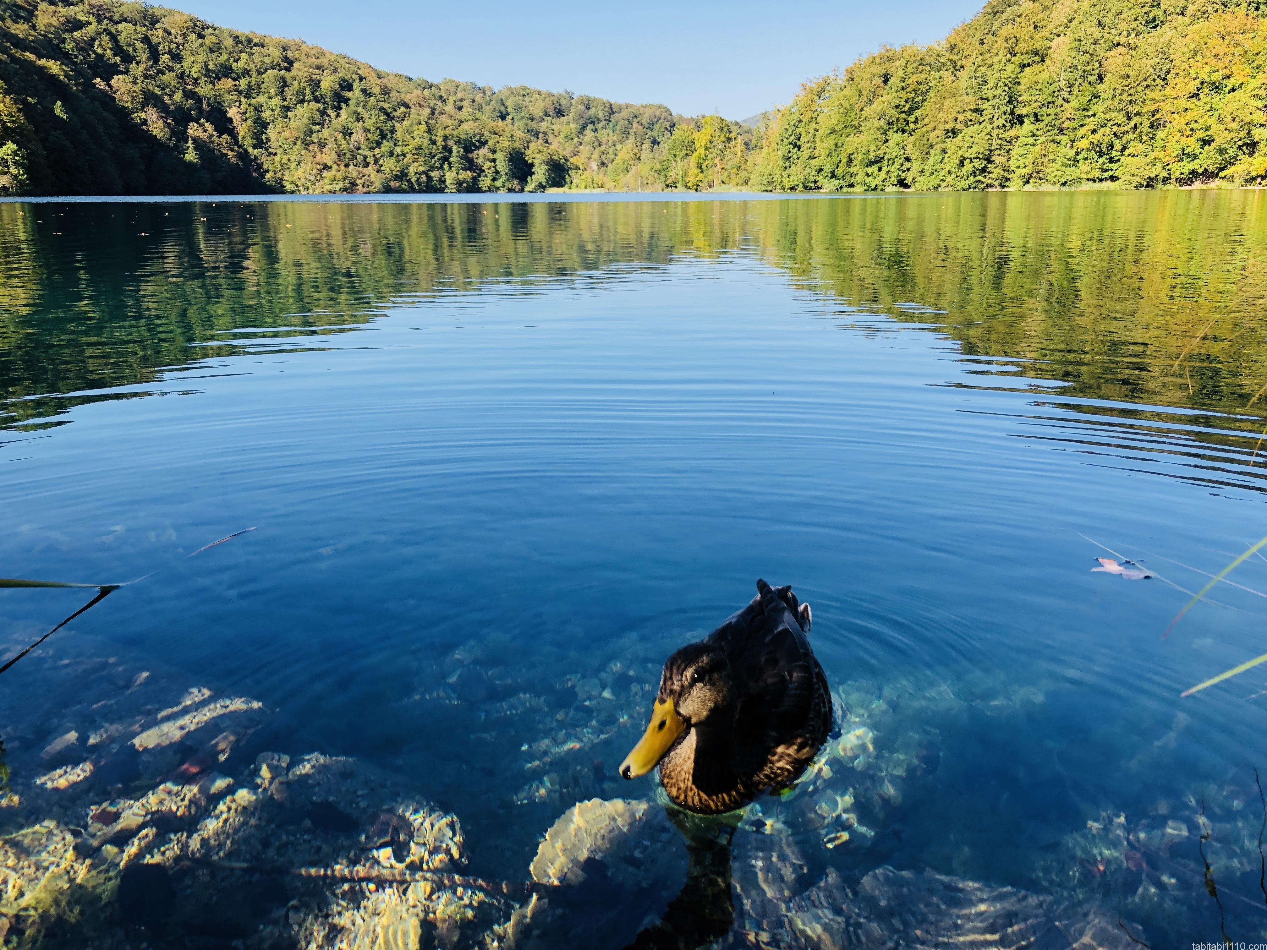 プリトヴィッチェ |上湖