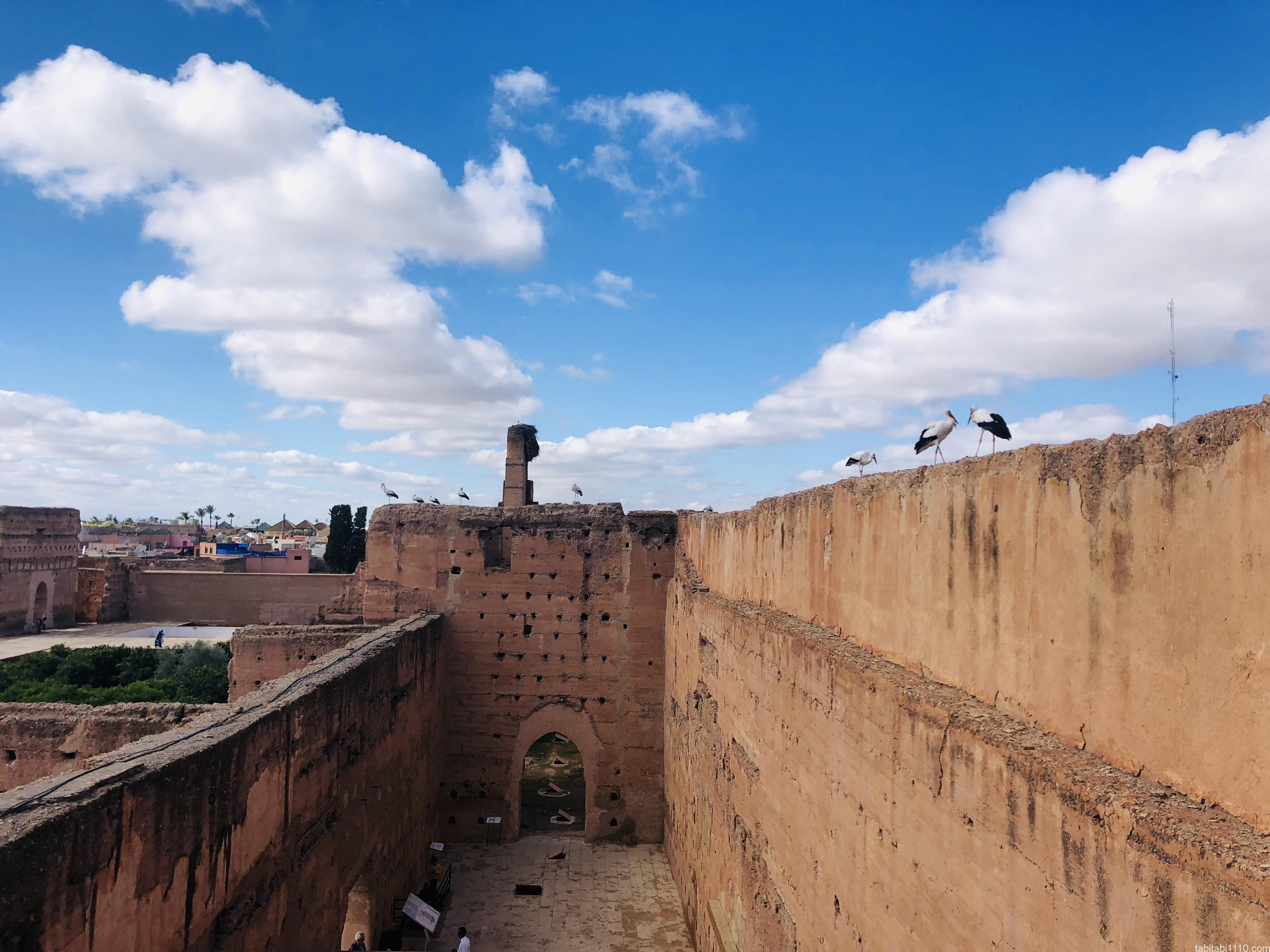 エル・バディ宮殿|コウノトリ