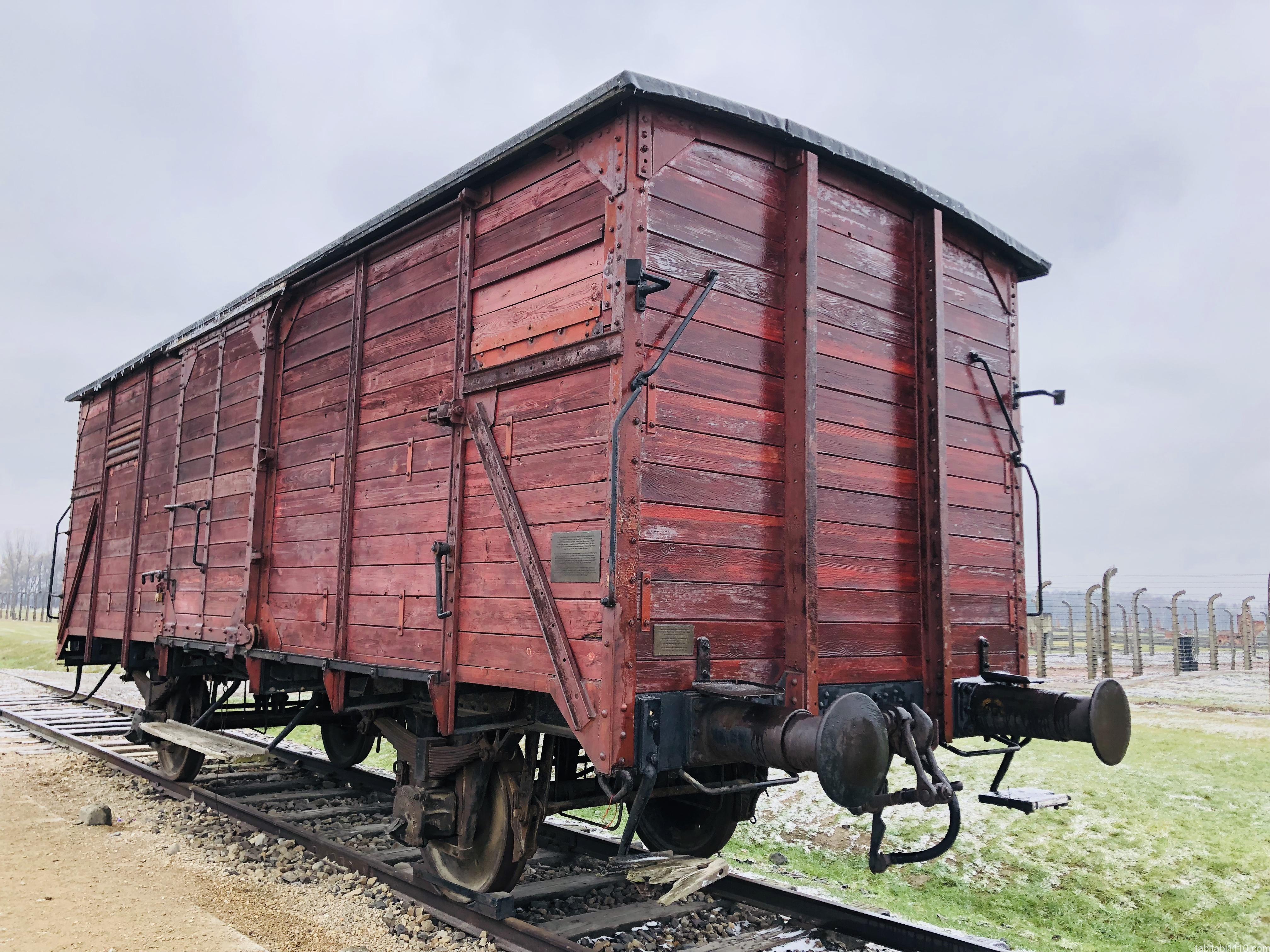 ビルケナウ強制収容所|貨物列車