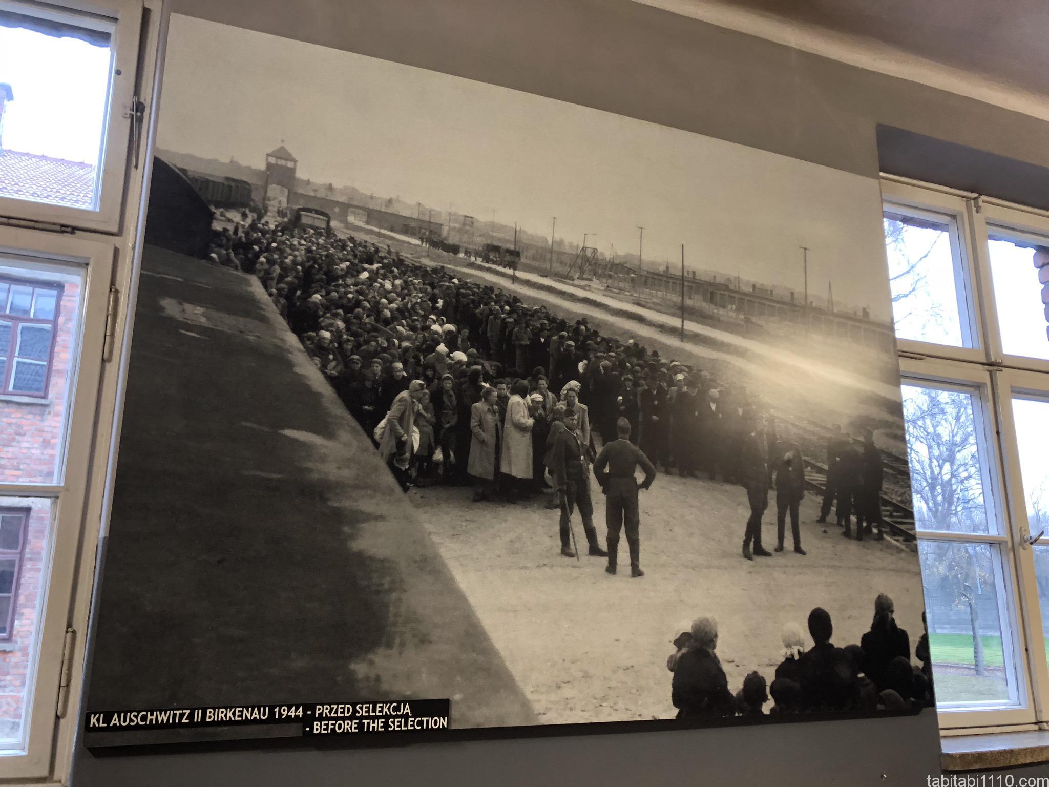 アウシュビッツ強制収容所|写真