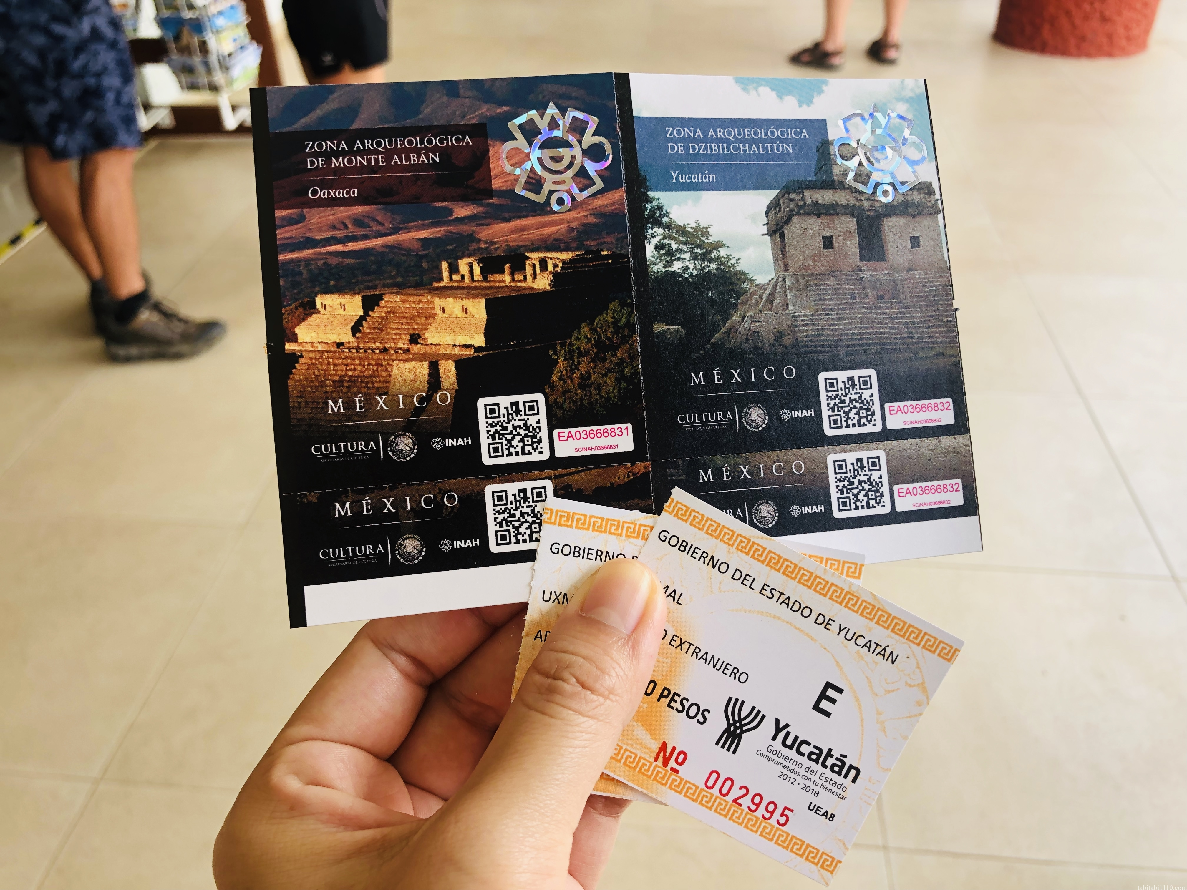ウシュマル遺跡|入場チケット