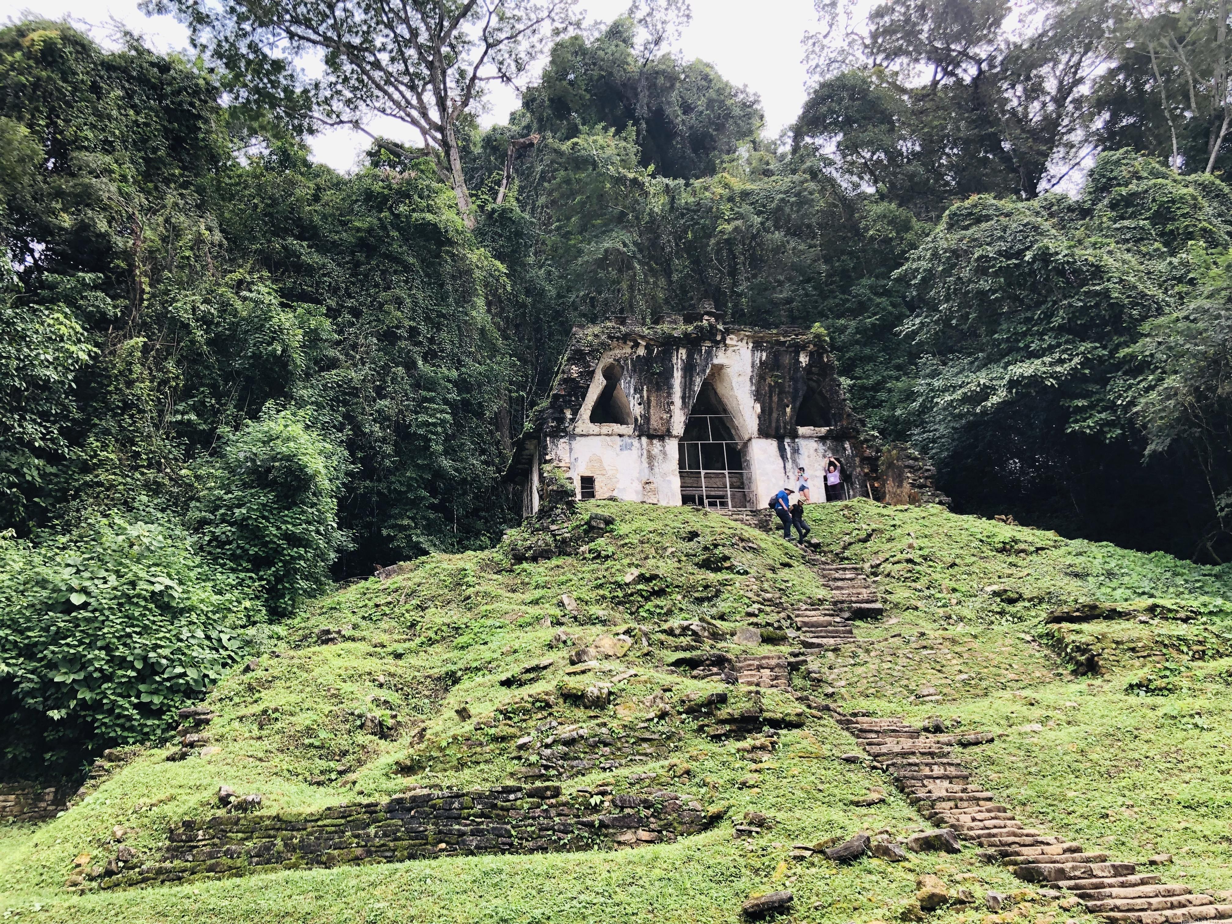 パレンケ遺跡|葉の十字架の神殿