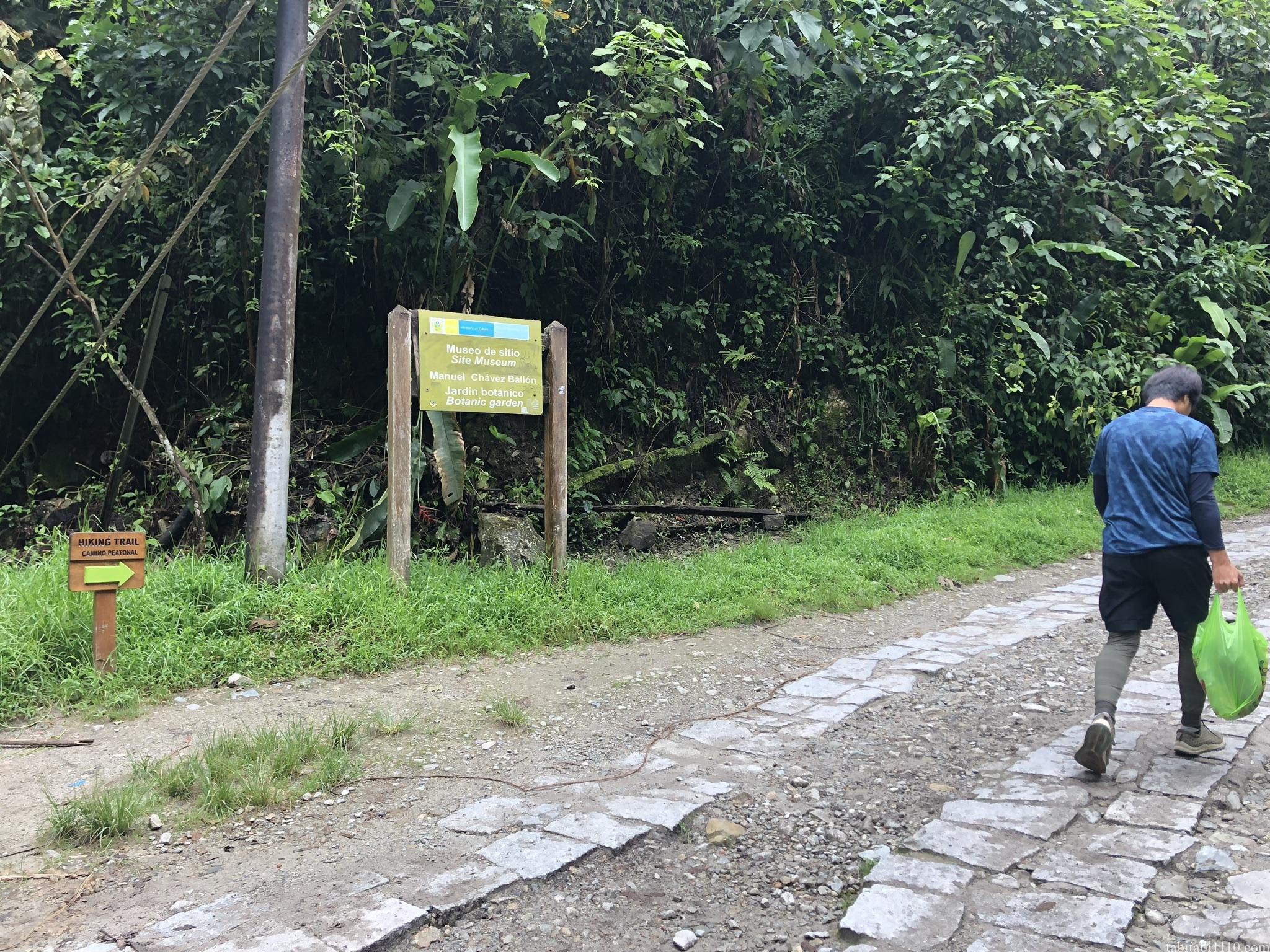 マチュピチュ村からマチュピチュへの登山