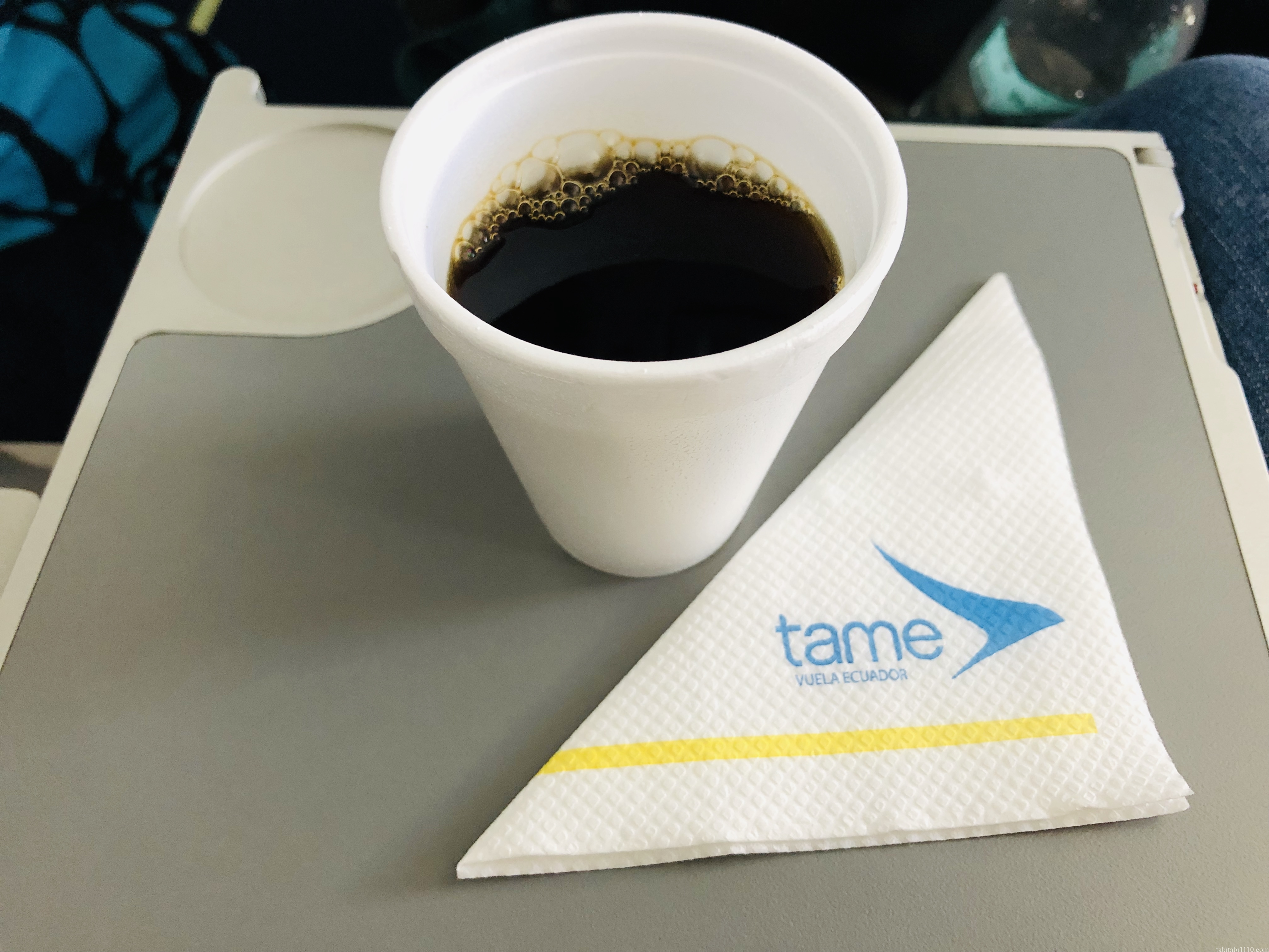 tame航空