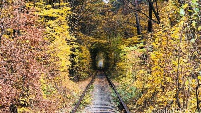 ウクライナ 愛のトンネル 秋