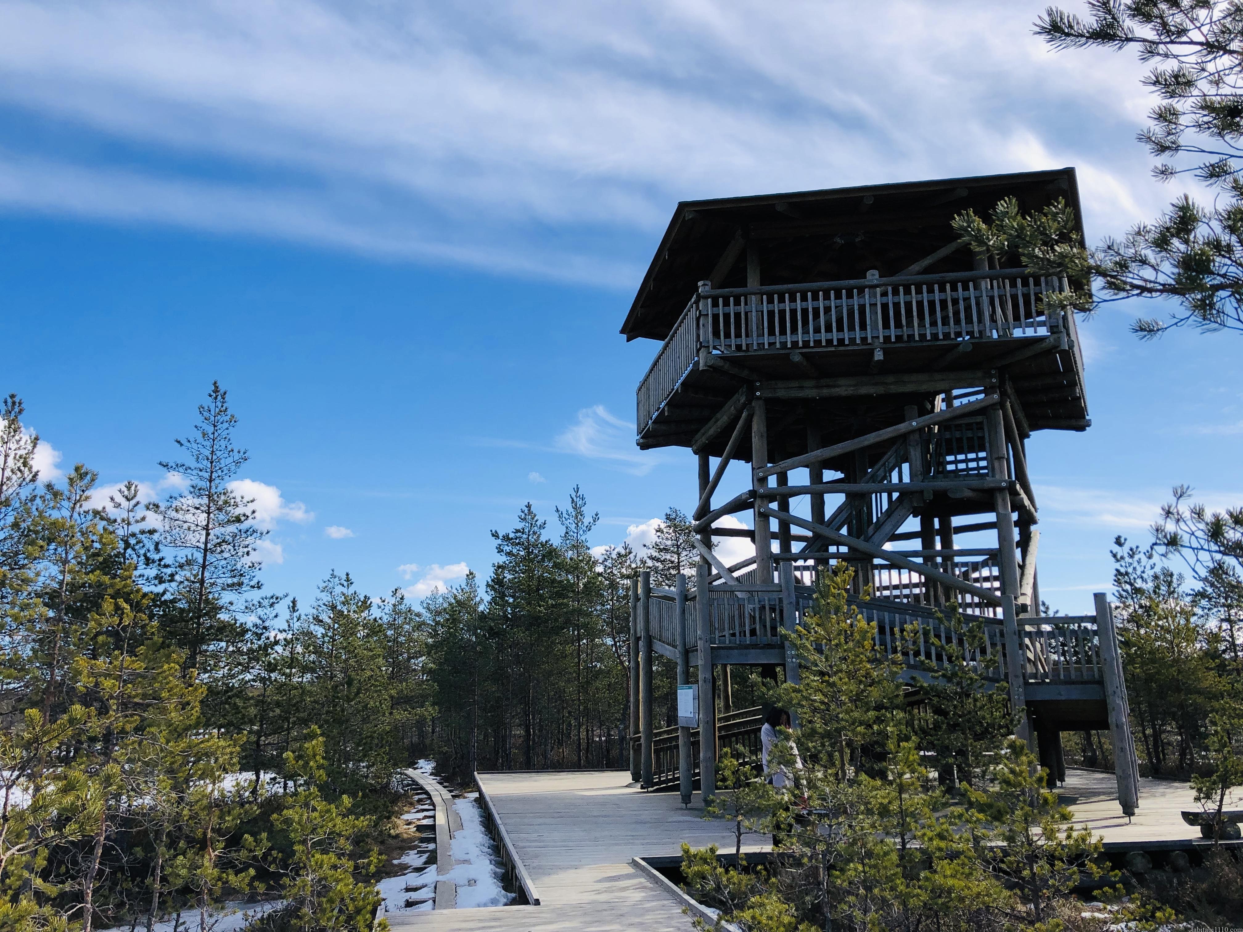 ビル湿原の展望台